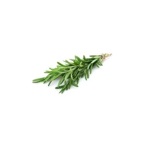 Rosemary, Fresh