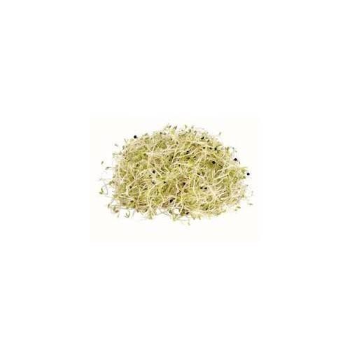 Sprouts, Alfalfa, 125g