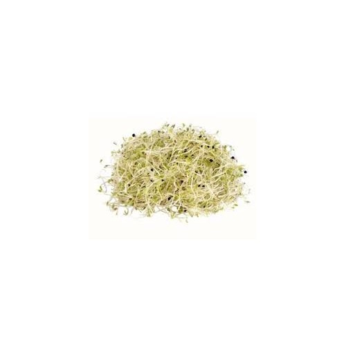 Sprouts, Alfalfa, 250g